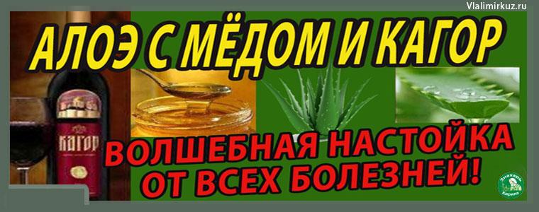 Алоэ-мёд-кагор-настойка-от-болезней.рак-излечим